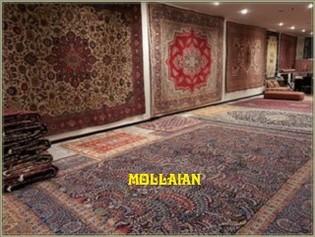 Tappeti Kilim Economici : Azienda chi siamo mollaian tappeti orientali